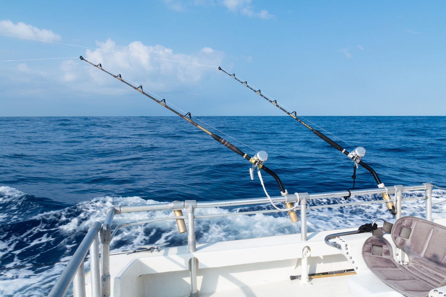 deep sea fishing rods set up on the boat