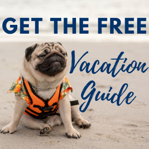 get the free vacation guide, dog on beach with life jacket